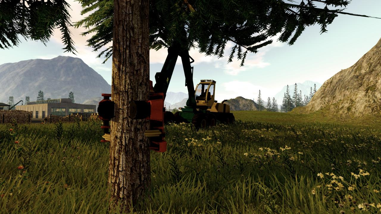 Forestry 2017 The Simulation Setup Free Download